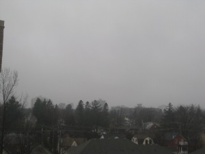 we are severely lacking in daylight, today - grey! grey! grey!